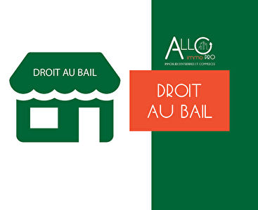 A vendre - DAB local commercial 50 m² environ - RN10 - ANGLET